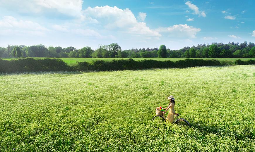 yves rocher images taken by mediatropy digital marketing agency
